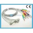 Philips(荷兰飞利浦)10导联端子线,IEC      全新
